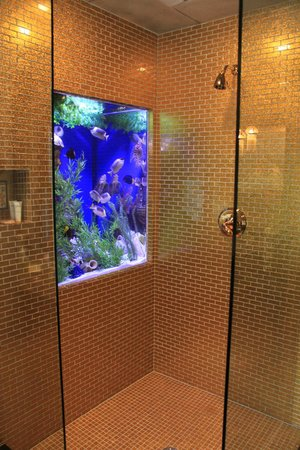 The Roxbury, Contemporary Catskill Lodging: Fish tank in the Cleopatra bathroom