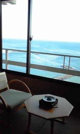 Ginpaso: 12畳 通常客室 部屋からの眺め