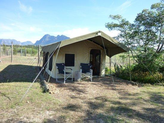 Drakenstein Lion Park: Tent