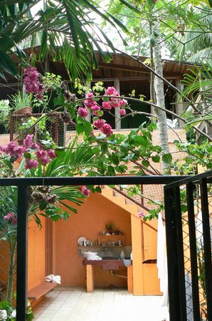 Iguana Inn: Beautiful flowers everywhere