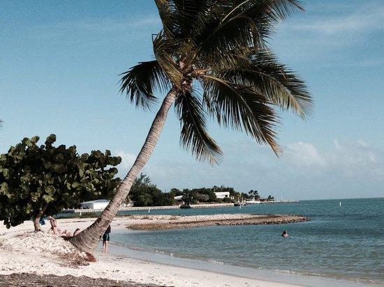 Sombrero Beach : Sunny day and clean beach