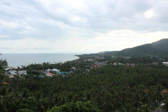 Seaview Paradise Resort Hotel: Изумительный вид с виллы. Фото не передаёт, к сожалению, всего великолепия!