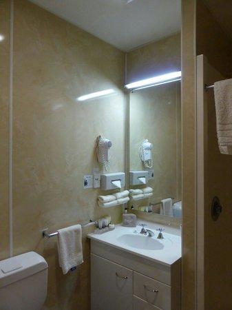 Amross Court Motor Lodge: Shower
