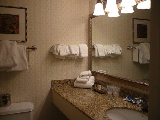 The Hotel Hershey: ванная комната