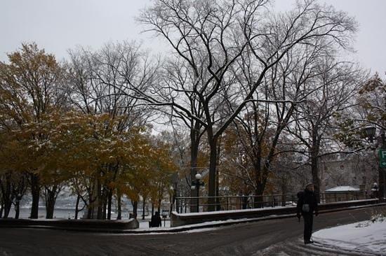 B&B La Marquise de Bassano: 28 ottobre 2013. Prima neve dell'anno a Quebec