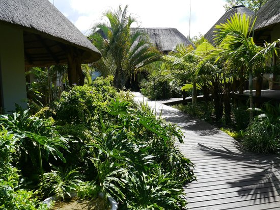 Lodge Afrique : View from room 6