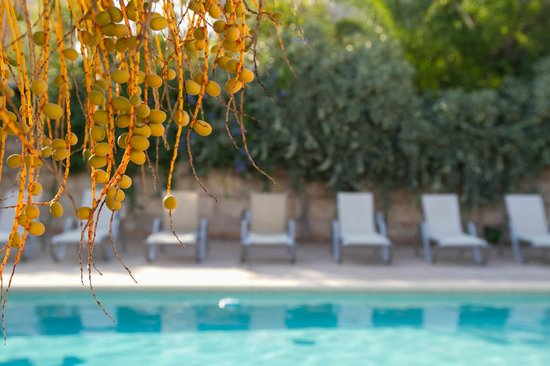 Villa Sa Barcella: Pool