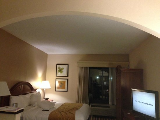 Comfort Suites: View in room
