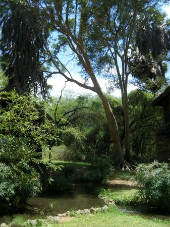 Sarova Shaba Game Lodge: An oasis in the semi-arid countryside