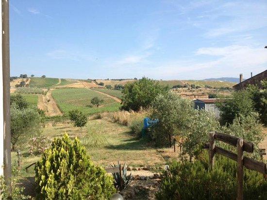 Borgo Fonte Lupo: Территория