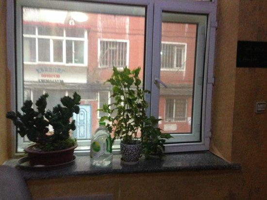 Harbin Russia International Youth Hostel : Window, Russia Youth Hostel