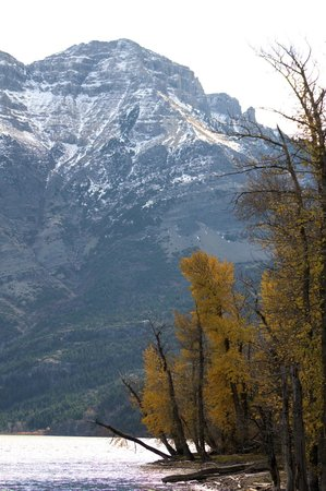 Waterton Lakes Lodge Resort: out at the lake
