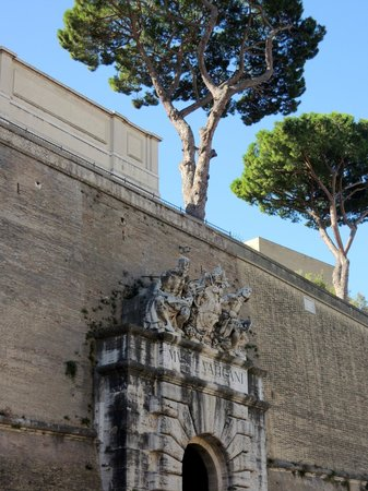 Guided Tours in Rome and Vatican Museums: Музеи Ватикана