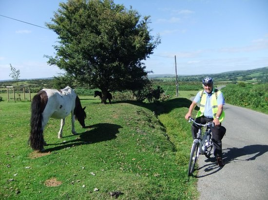 Dartmoor Electric Bicycles: meeting the natives