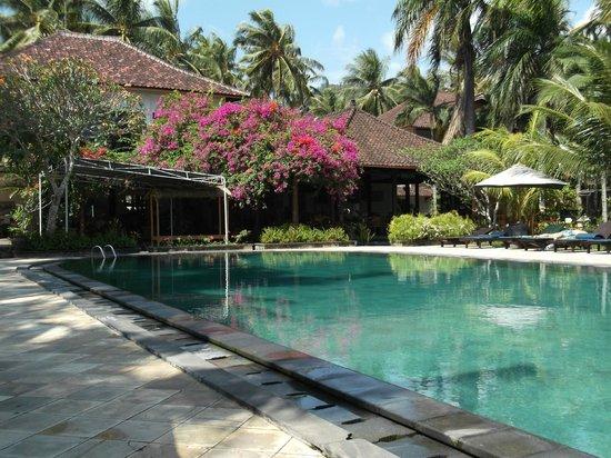 Puri Saron Senggigi Beach Hotel : piscine et restaurant