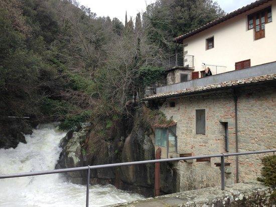 Residence La Ferriera: view