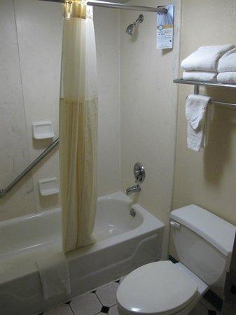 Quality Inn & Suites: salle de bain classique