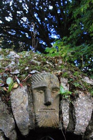 Jardin et foret picture of birr castle gardens birr for Jardin foret