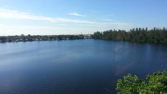 SpringHill Suites Miami Airport South: Lake view