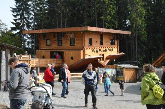 Waldwipfelweg: Haus am Kopf kostet 2 € Eintritt extra, die sich lohnen.