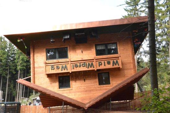 Waldwipfelweg: Das Haus auf dem Kopf ist das beste Erlebnis.