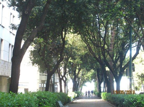Melia Genova: Улица, на которой стоит отель