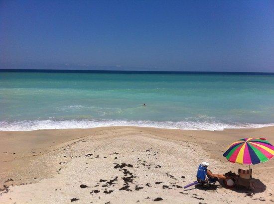 Ocean Village Beach