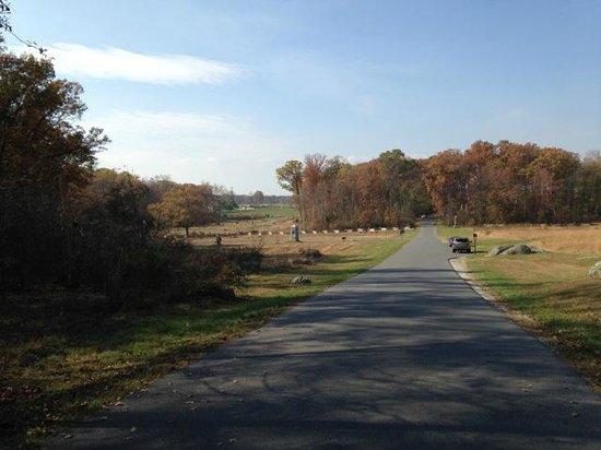 GettysBike Tours: The Wheatfield