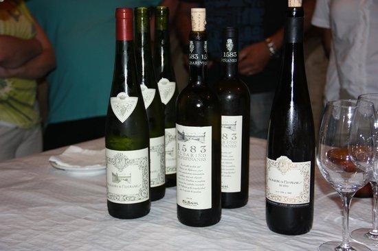 Bodegas del Palacio de Fefinanes: Cambados - Bodegas del Palacio de Fefiñanes - Botellas de albariño en la sala de degustación
