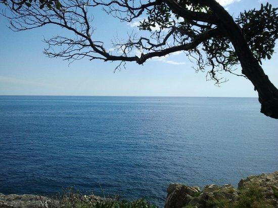 Passeggiata Anita Garibaldi a Nervi: Красивейшие виды с тропы