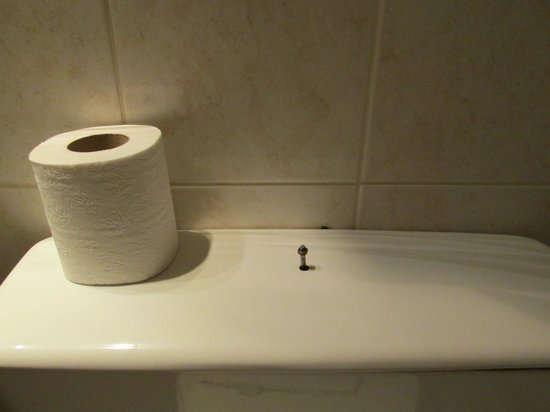 Auriane Porte de Versailles : no flush in toilet