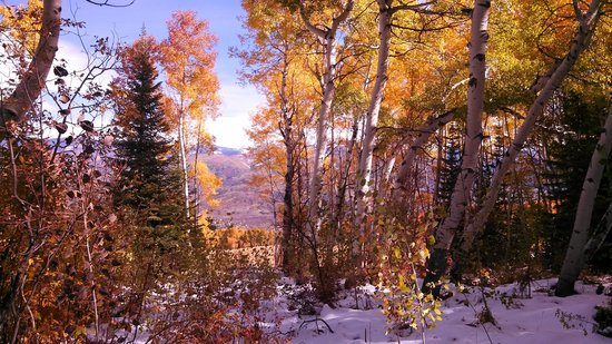 The Steamboat Grand: Hike in snow with Aspens @ peak color..