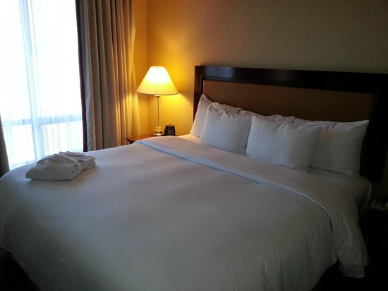 Hilton Vancouver Airport: King Bed