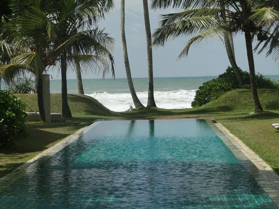 The Frangipani Tree by Edwards Collection : pool view