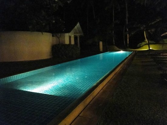 Frangipani Tree: Pool