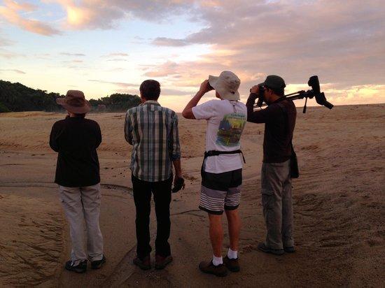 Hotel Cielo Rojo: Birding with Luis Morales at the estuary