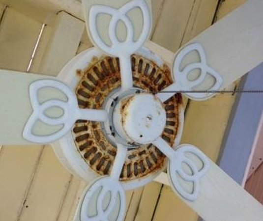 Captiva Island Inn Bed & Breakfast: Rusty Fan