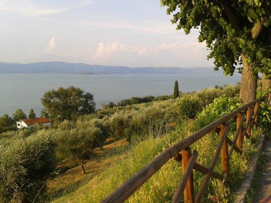 Hotel  la Torre: Una vista del lago