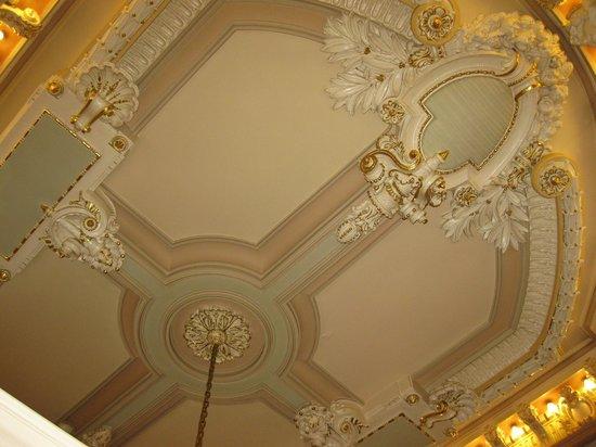 Wolcott Hotel: лепные потолки