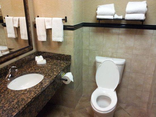 Drury Inn & Suites Flagstaff : Bathroom