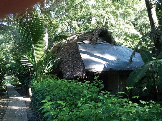Mayabell: The Hut