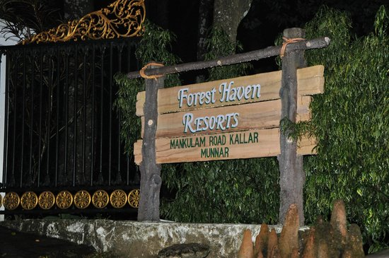 Forest Haven Resort & Vista Rooms: ener