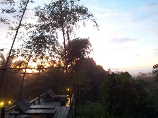 Paganakan Dii Tropical Retreat : sun deck in the forest