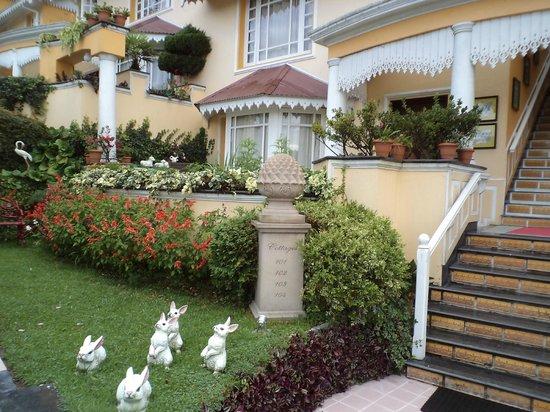 Mayfair Darjeeling : awesome garden