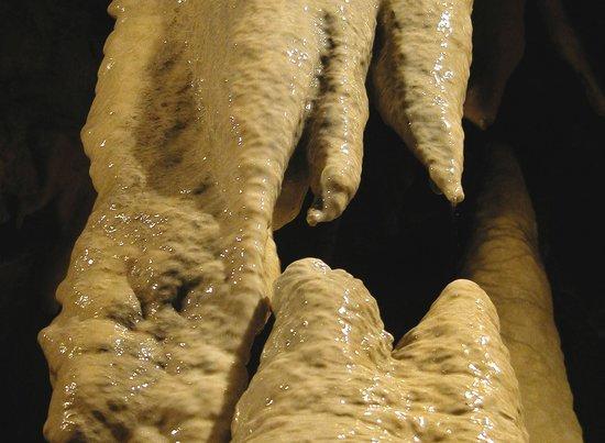 Grotte di Equi Terme, interno stalattiti