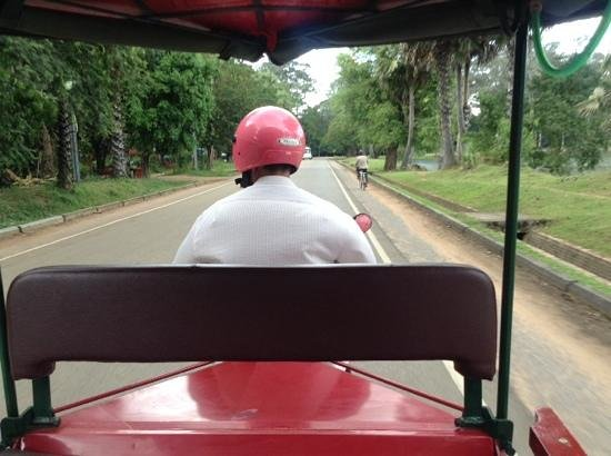 Rosy Guest House : Our tuk tuk driver