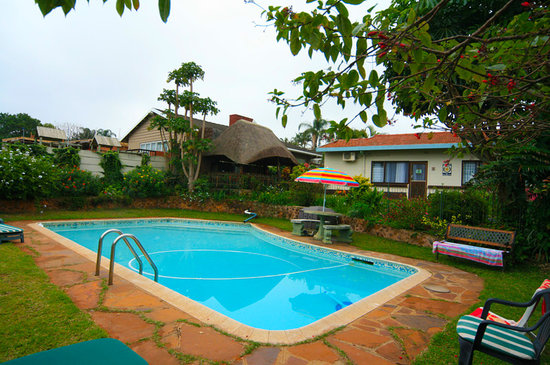 Anabels Bed & Breakfast : Daytime view of the pool