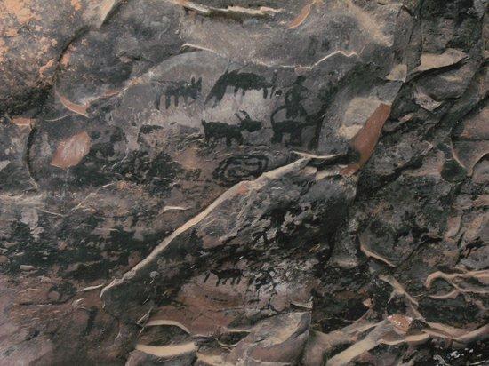 Palatki Ruins: Petroglyphs