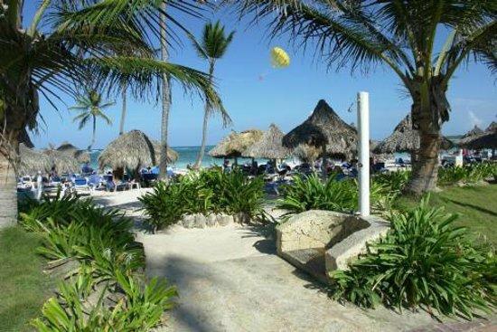 VIK Hotel Cayena Beach : Vista de Playa-Piscina / Sea View-Pool View