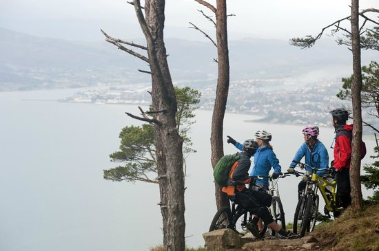 Mountain Bikers stopping for breath at #kodakcorner, Rostrevor Mountain Bike Trails, N.Ireland